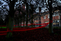 Sudbury Hall_Christmas 2014_South Front Ornamental Trees_Susan Guy (2
